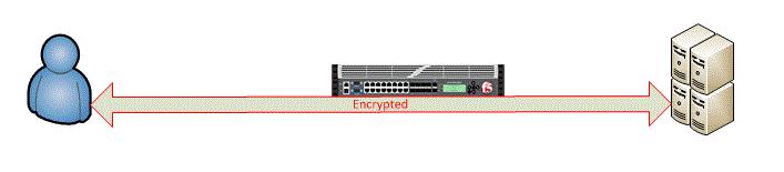 Bntpro SSL Offload SSL Pass Through ve SSL Bridging Nedir 2