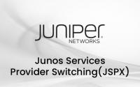 Junos Service Provider Switching - JSPX Eğitimi